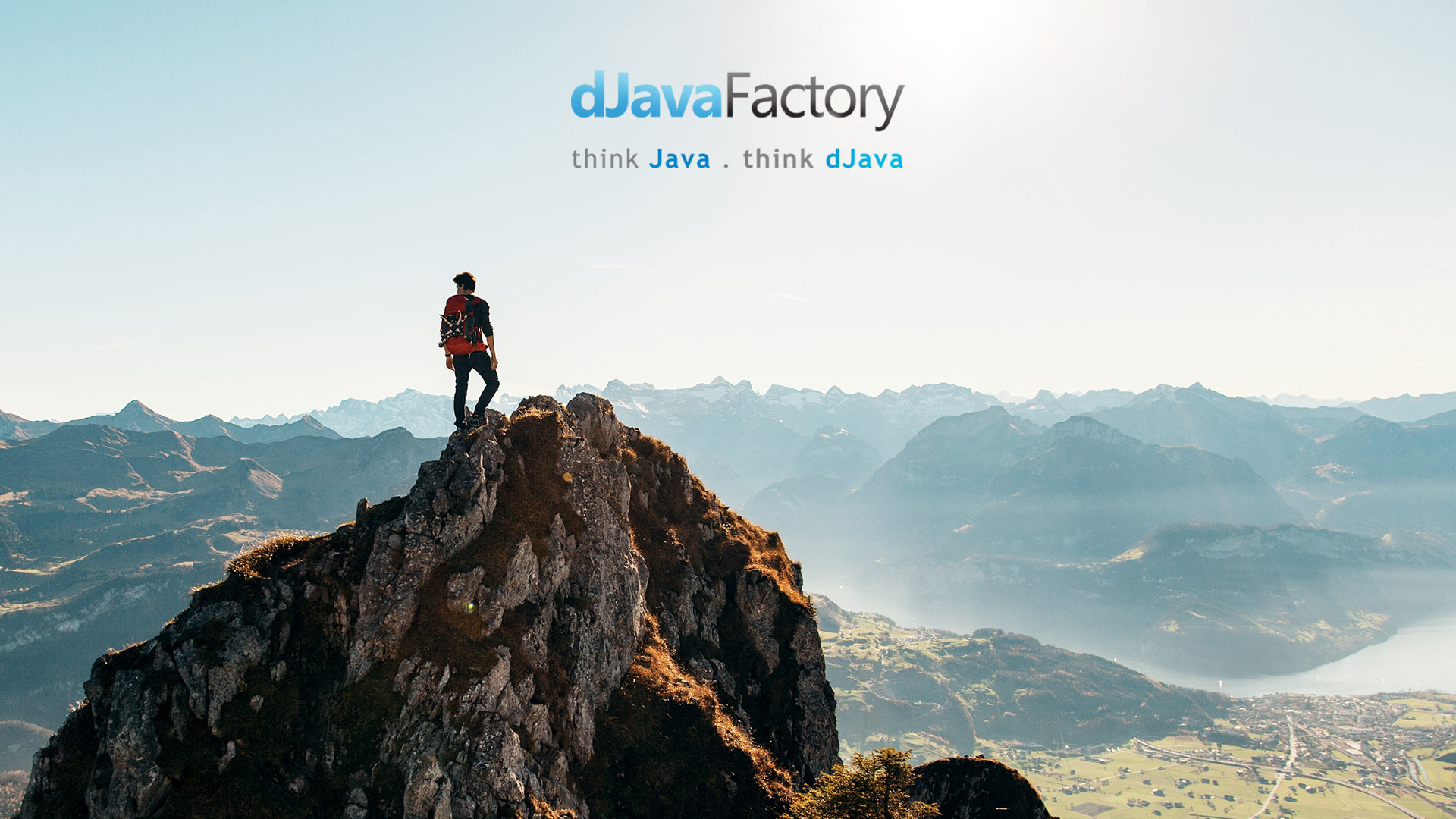 Java Consulting